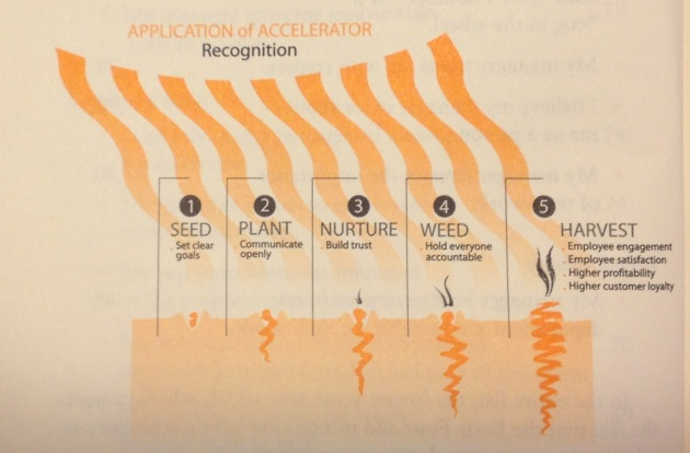 Carrot Principle Accelerator
